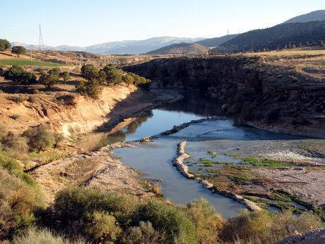 کشت پاییزه و بهاره در حاشیه رودخانه بشار یاسوج ممنوع شد