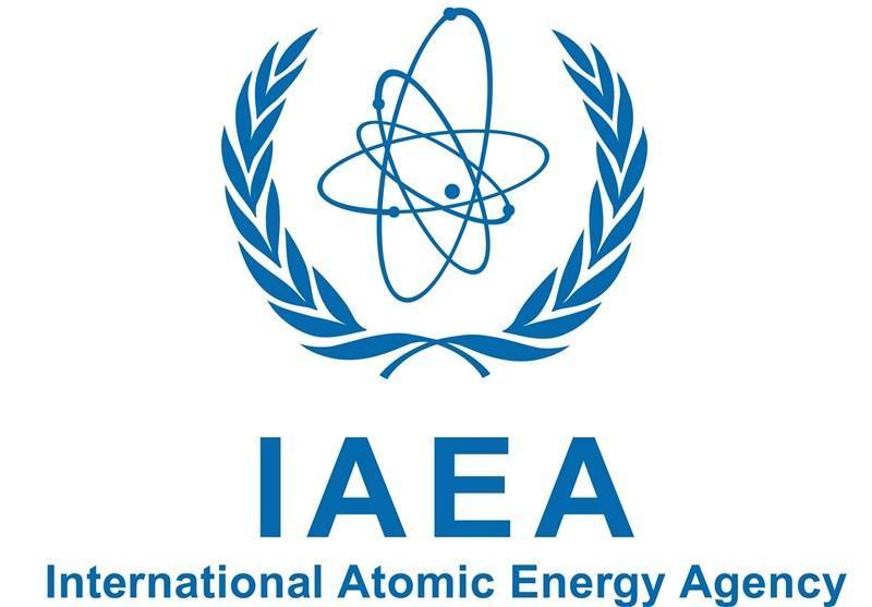 مدیرکل جدید آژانس اتمی از ژانویه 2020 مشغول کار می گردد