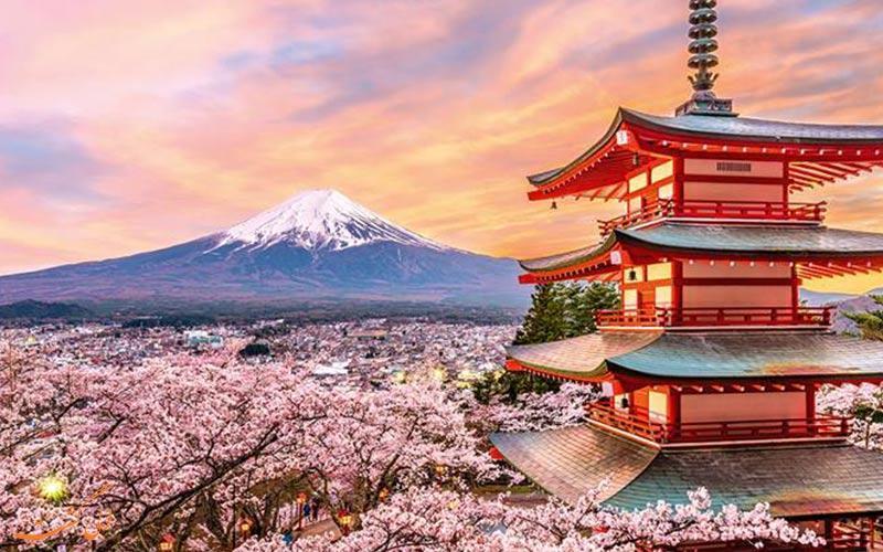 آیا از بهترین زمان سفر به ژاپن با خبرید؟