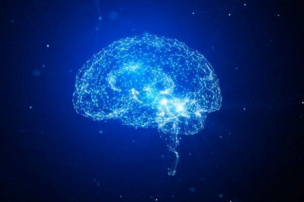 رقابت 20 ایده در حوزه تحریک غیرتهاجمی نواحی عمیق مغز