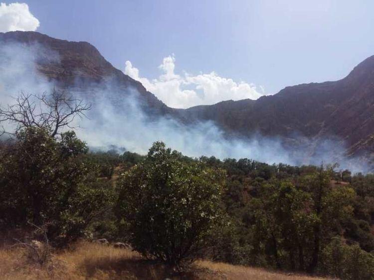 آتش سوزی ارتفاعات دالاهو ادامه دارد