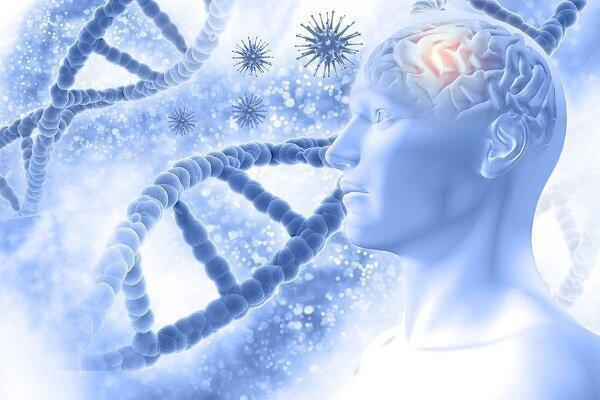 مرحله دوم آزمایش بالینی واکسن آلزایمر موفقیت آمیز بود