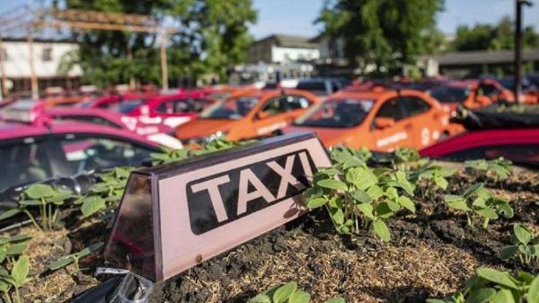 طراحی خانه ویلایی مدرن: تاکسی هایی که به باغچه های کوچک تبدیل شدند